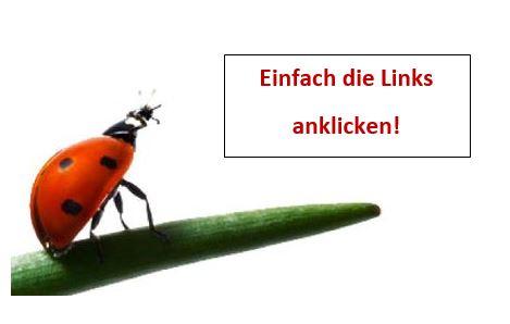 Marienkäfer_Link
